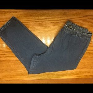Everyday Pant Blue Pull-on Plus Sized Jeans 1X WP